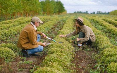 Júliustól 25 millió forintos támogatás kertészeti gépek, eszközök beszerzésére!